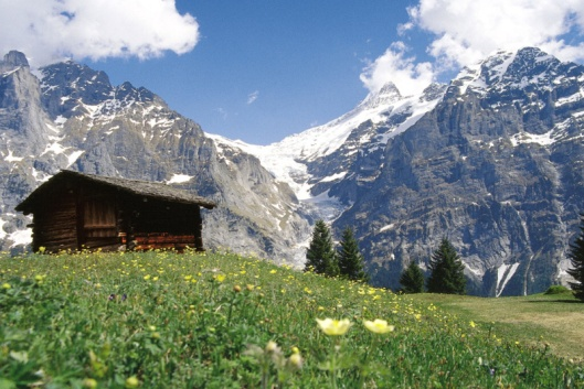 typical-swiss-mountain-chalet