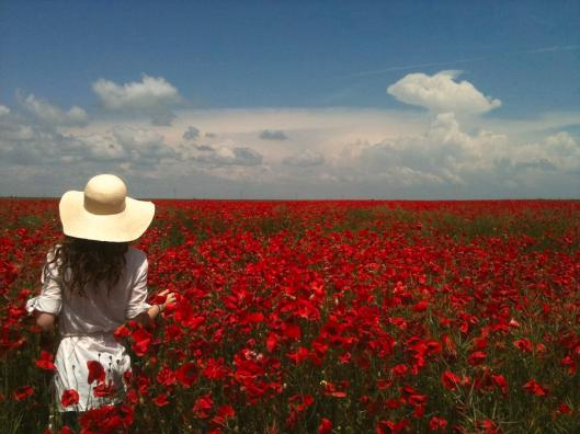 red-poppies-and-lady-georgeta-blanaru
