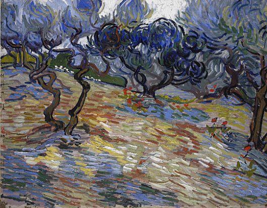 Olive_Trees_Van_Gogh