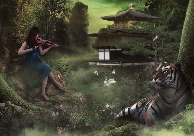 violin_with_tiger_by_gocer_art-d34zmki