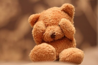 Teddy bear   Hortus Closus
