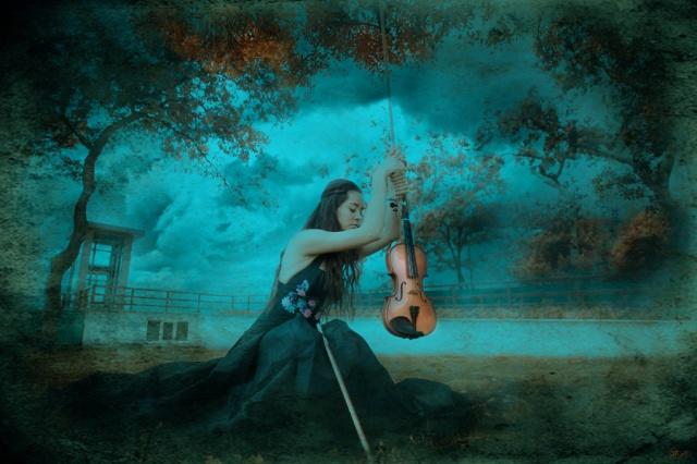 violin_vi_by_cikolatali_waffle
