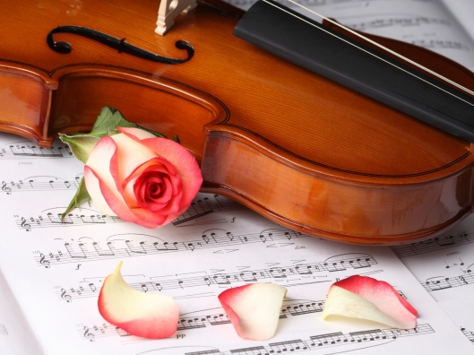 Love-Violin-Wallpaper