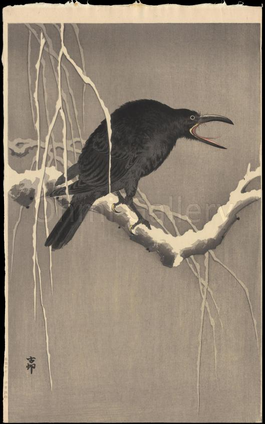 Shoson_Ohara-Cawing_Crow-Large_Oban-Nishinomiya-01-09-21-2006-7684-x2000